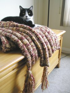 Corinthian Blanket and Cat