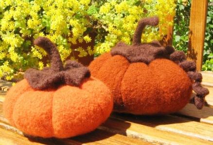 Pumpkins by Jordana Paige